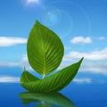 ММК вкладывается в экологию